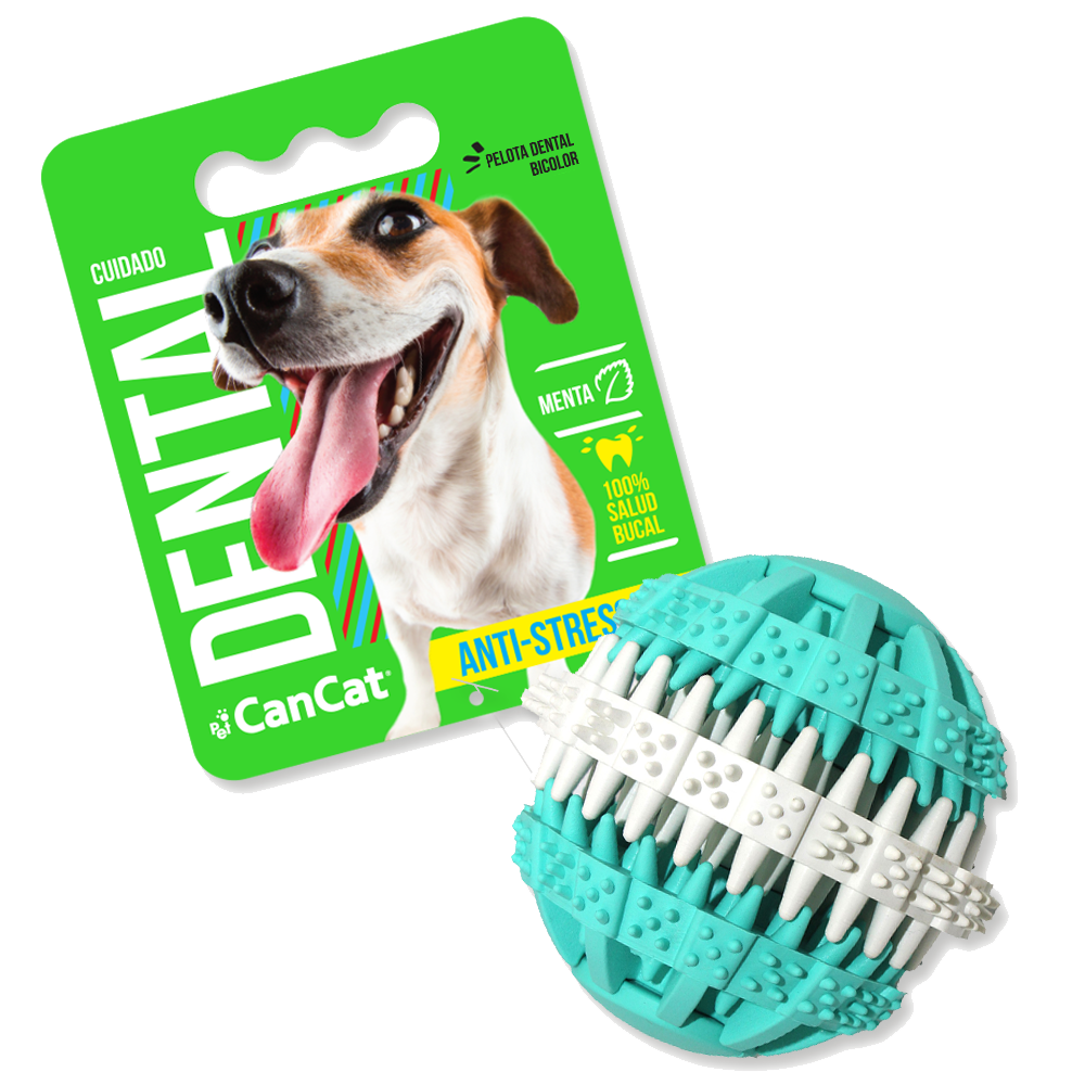 3654010 PELOTA DENTAL FUN CANCAT 5004